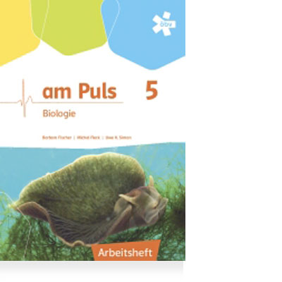 https://magazin.oebv.at/wp-content/uploads/2017/03/produktempfehlung_ampuls5_ah.jpg