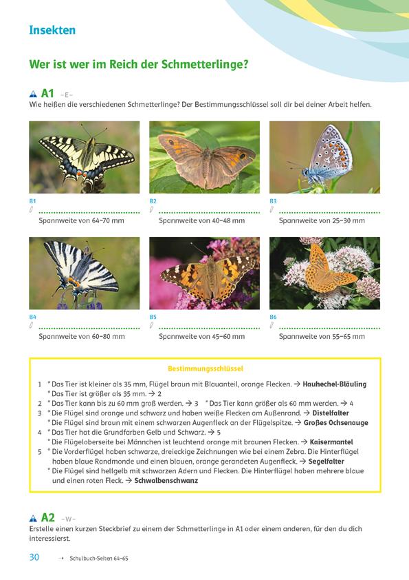 Bestimmungsschlüssel zur Artenvielfalt, einfach bio 2 Arbeitsheft, S. 30