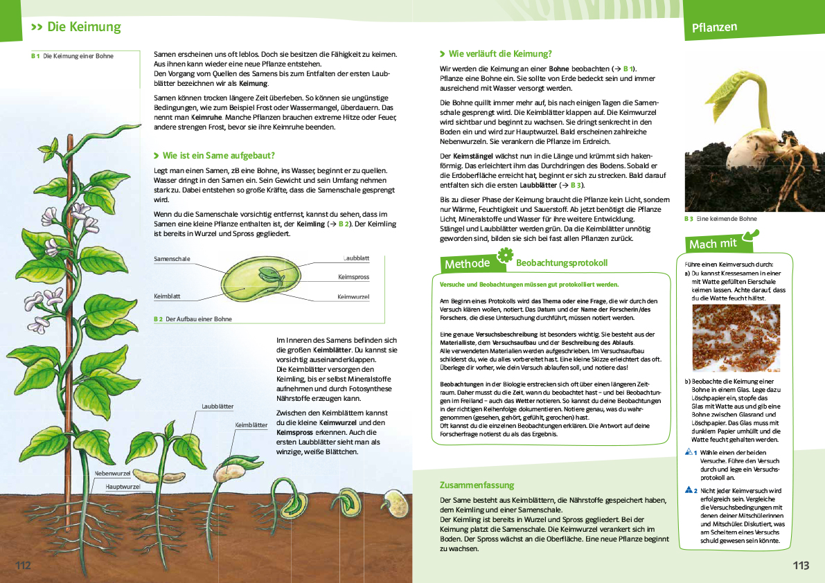 Methodenkompetenz im Biologieunterricht   öbv Magazin