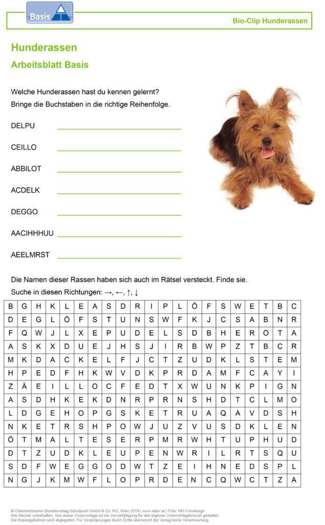 Bioclips Arbeisblatt Basis Hunde